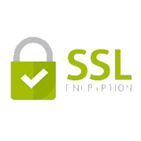 The standard security technology for establishing an encrypted link between a web server and a browser.