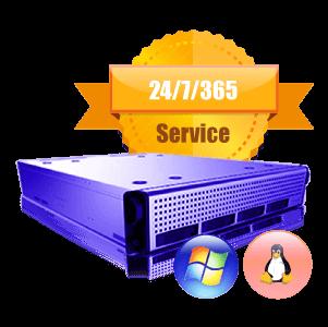 Dedicated Bare Metal Server, Cheap Dedicated Bare Metal Servers in the USA. The servers start from $35/m.
